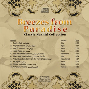 Breezes from Paradise Volume 2 CD Cover